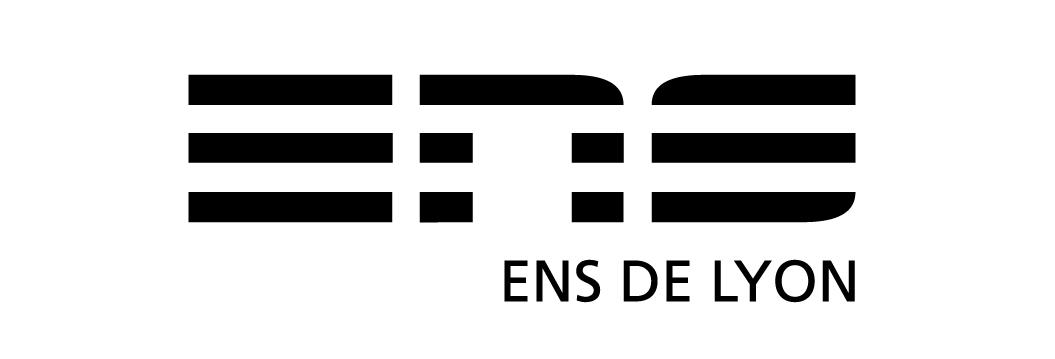 Logo ens2010